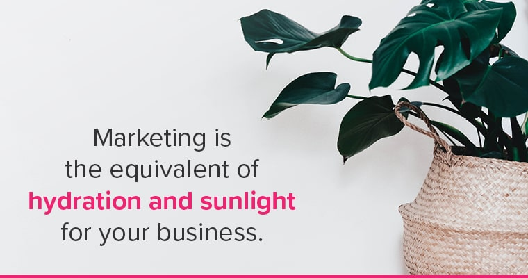 Help your business thrive. Marketing is the equivalent of hydration and sunlight for your business.