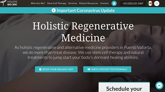Preview image of Holistic Bio Spa's new responsive website.