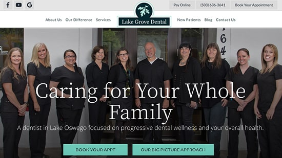 Preview image of Lake Grove Dental's responsive website homepage