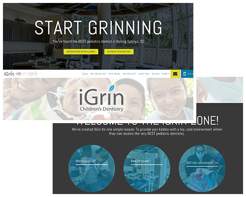 Preview of the iGrin website