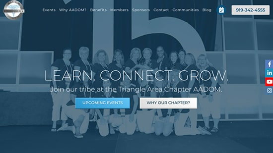 Preview image of AADOM Triangle Chapter's new responsive website.